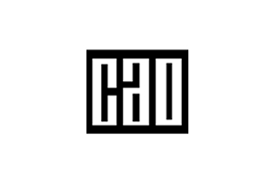 CAO Website Link Logo